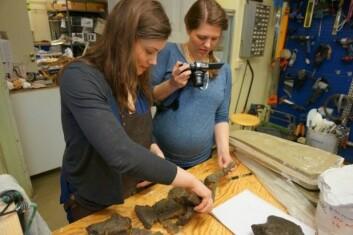 Hva er opp og ned og høyre og venstre? Kollega Aubrey Roberts og jeg diskuterer og fotograferer skulderknoklene til fiskeøgla Nillefanten i juni 2013. (Foto: SJRG)