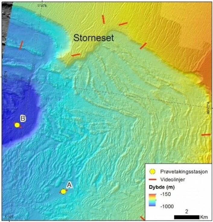 Figur 2. Detaljkart over Storneset som viser plasseringen av to stasjoner (A og B) der det er tatt sedimentkjerner. Stasjonene ligger i to adskilte avsetningsbassenger i den store rasgropen fra Storeggaraset. De røde strekene viser hvor det er kjørt videolinjer langs 700 m lange transekter. (Foto:MAREANO)