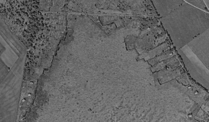 """Dette er et eksempel på et større område med tradisjonell kutting av torv, fra Grønningsmyra i Rissa. Bildet er fra 1955. På slike områder hvor torvstikkinga var mer omfattende, ser man gjerne at myra blir «spist» opp fra kantene. Myra har siden også vært industrielt torvtak. (Foto: <a href=""""https://www.norgeibilder.no/"""">norgeibilder.no </a>/ Statens vegvesen / NIBIO / Kartverket)"""