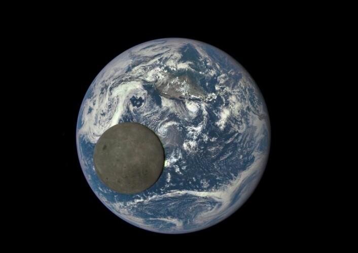 Baksiden av Månen passerer foran Jorda på dette bildet tatt fra romsonden Deep Space Climate Observatory (DSCOVR). Bildet viser tydelig at Månen har en mørkere overflate enn Jorda. Den ser lysende ut fra Jorda bare fordi omgivelsene – den svarte stjernehimmelen – er enda mye mørkere. (Foto: NASA/NOAA)