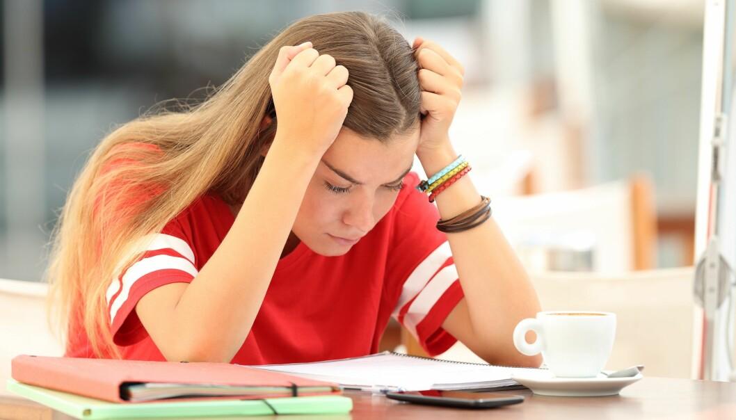 Skolen må være så god som elevene tror den er