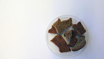 Forsker smakte på 100 år gammel brødskive