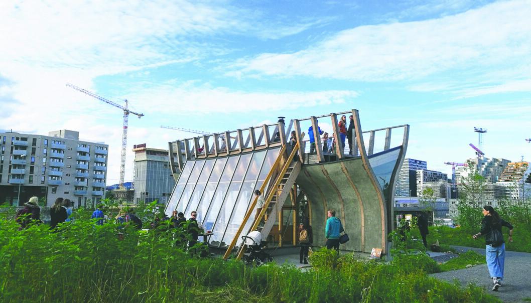 Mange drømmer om en egen liten hageflekk på Losæter. Sist de lyste ut 100 parseller, fikk de 4000 søkere. Forskere ved NMBU mener det er flere fordeler med å dyrke grønnsaker i byen. (Foto: Bjørvika utvikling)
