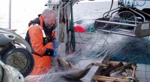 Norske fiskere stortrives på jobben og er sjelden syke