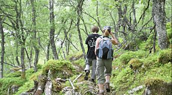 Jorda i europeiske skoger er på bedringens vei