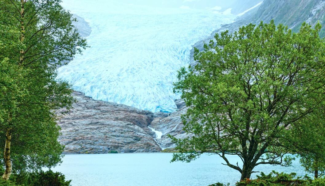 Saltfjellet-Svartisen nasjonapark er en av casene i forskningsprosjektet. (Illustrasjonsfoto: Colourbox)