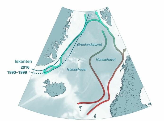 Havstrømmene i De nordiske hav. Nordover i overflaten går Golfstrømmens forlengelse langs vår kyst, før vannet synker ned og returnerer sørover langs kysten av Grønland. (Figur: Kjetil Våge)