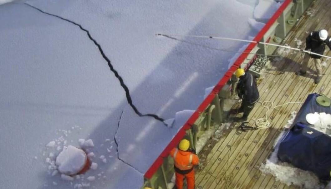 En bøye kommer opp gjennom isen under toktet i Weddellhavet i 2017.  (Foto: Jerome Demanges)