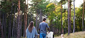 Forskere: Slik kan regjeringen sørge for likestilte foreldre