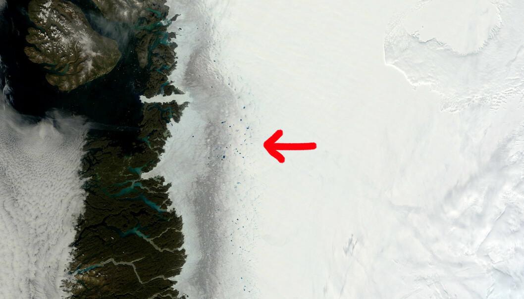 Satellittbilder av den mørke issonen på Grønland viser tydelig den urene isen i bemerkelsesverdig kontrast til uberørt snø. Slike bilder kan imidlertid ikke vise sammensetningen av urenheter. (Foto: MODIS / NASA)