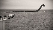 Danske forskere skal jakte på Loch Ness-uhyret