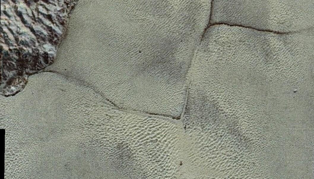 Plutos overflate. Du kan tydelig se noe som ser ut som sanddyner på bildene, men disse er laget av noe helt annet. En piksel på bildet tilsvarer omtrent 85 meter.  (Bilde: NASA/JHUAPL/SwRI