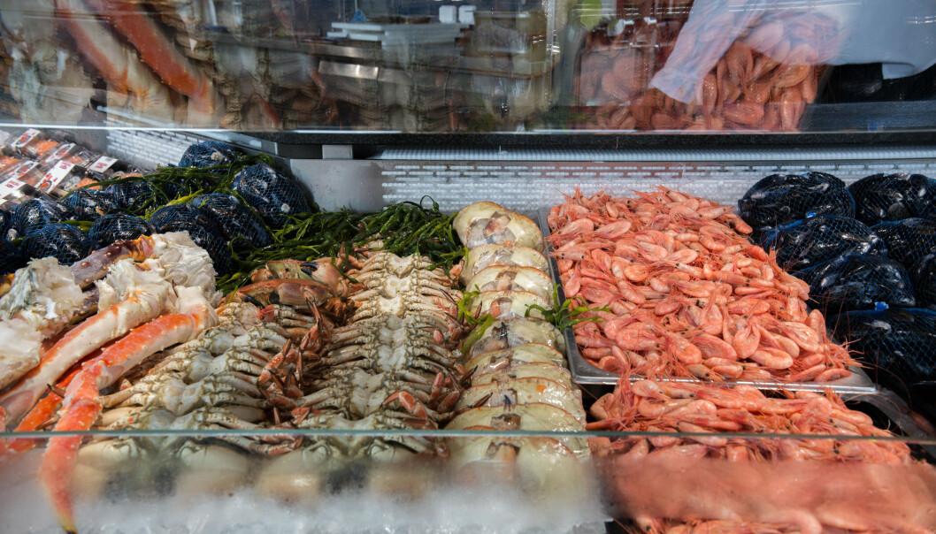 Sjømat ser ut til å øke fruktbarheten. De som spiser fisk og skalldyr minst to ganger i uken blir raskere gravide enn andre.  (Foto: Mariam Butt/NTB scanpix)