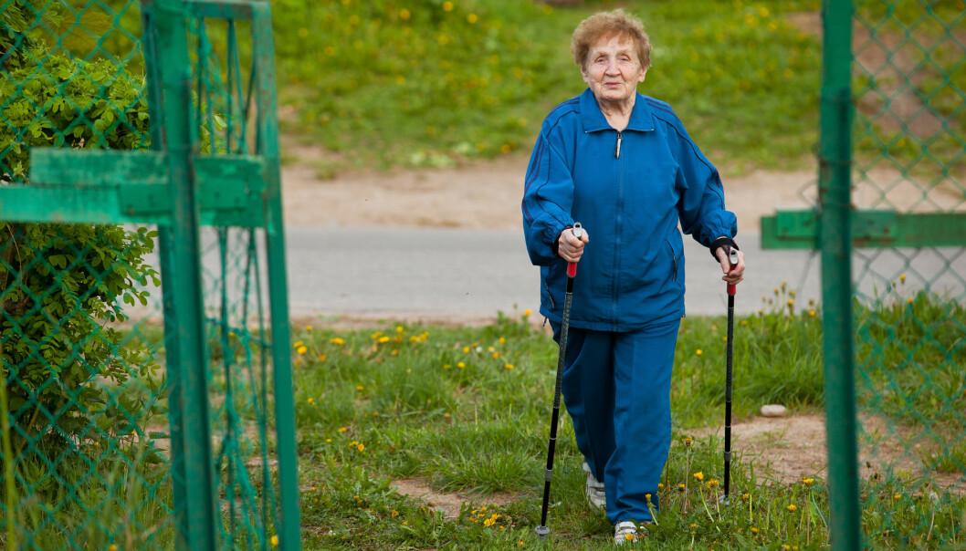 – Fagpersonell må ikkje vere så opptekne av at dei eldre skal talfeste effektar av rehabiliteringa. Mange tilsette fortalde at dette verka avsporande og bidrog til å skape avstand der målet var å skape nærleik og dialog, seier forskar. (Illustrasjonsfoto: Shutterstock / NTB Scanpix)