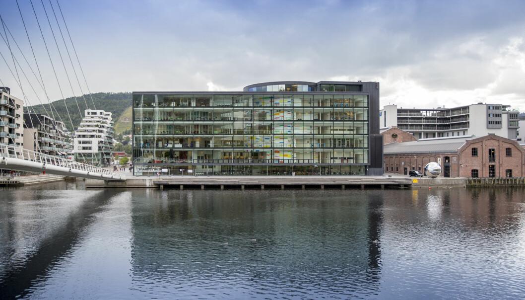 To forskere ved Universitetet i Sørøst-Norge har brutt forskningsetiske retningslinjer, ifølge det felles redelighetsutvalget ved Universitetet i Sørøst-Norge og Høgskolen i Innlandet. (Foto: Tine Poppe / Universitetet i Sørøst-Norge)
