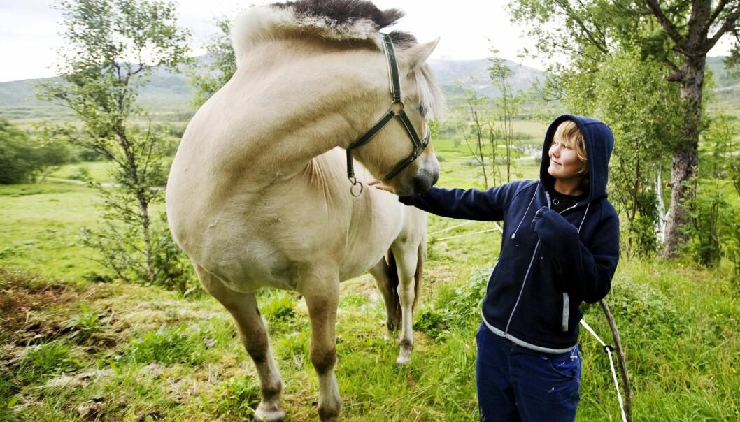 Hesten er god til å tolke ansiktsuttrykket ditt. Men hva gjør det med forholdet til mennesker på sikt? (Foto: Kyrre Lien/NTB scanpix)