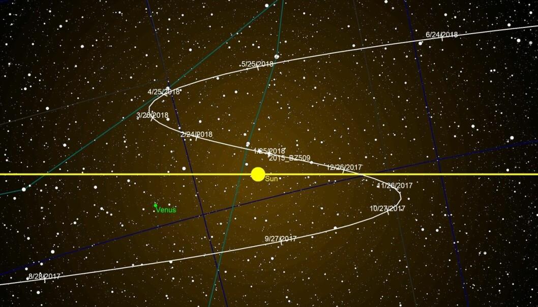 Minikloden – asteroiden – 2015 BZ509 går i motsatt retning rundt Sola, sammenlignet med andre planeter, måner og asteroider i solsystemet vårt. Nå har britiske astronomer funnet ut at den har gått slik helt siden solsystemets barndom. Dermed må den ha kommet fra en annen stjerne. Figuren viser banen til asteroiden i 2017 og 2018. (Figur: Tomruen, CC-BY SA4.0)