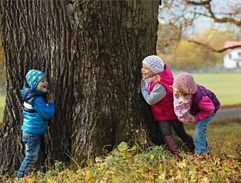 Derfor må barn leke i naturen