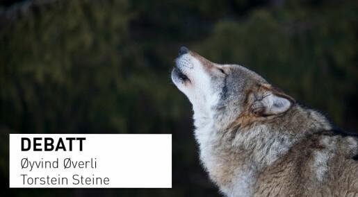 Debattinnlegg: Mer om ulv og ulveforskning: Ingenting er ignorert