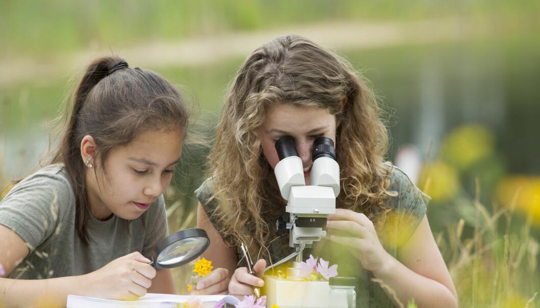 Forsker har laget en undervisningsmodell for naturfagslærere. – Her handler det om å være kreativ, ha kritisk tenkning, problemløsning, samarbeid, handlingskompetanse og verdier for å se framover, sier hun. (Illustrasjonsfoto: Shutterstock / NTB Scanpix)