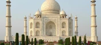 Siste nytt! Insekter herper Taj Mahal!