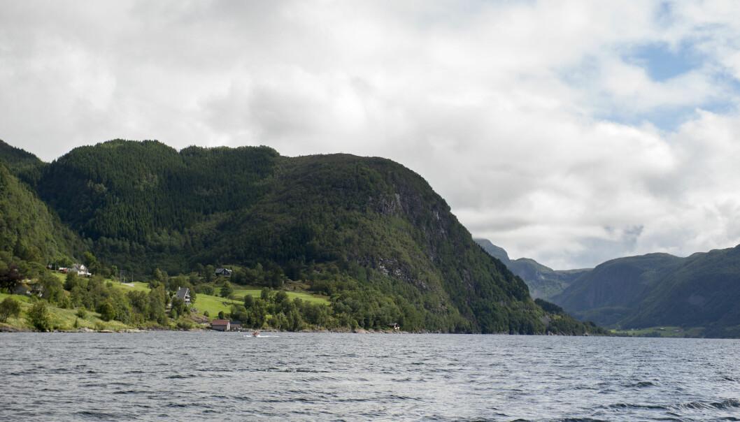 Regjeringen har gitt selskapet Nordic Mining tillatelse til å deponere gruveavfallet sitt i Førdefjorden i Sogn og Fjordane. Hvilke konsekvenser får det for organismene i sjøen? (Foto: Marit Hommedal / NTB scanpix)