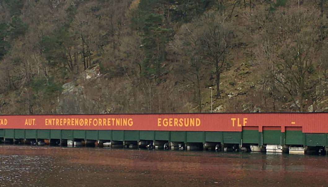 Utenfor Egersund er kystlinjen helt spesiell. Her finnes det nesten ingen forskjell på flo og fjære. Hvorfor er det slik? (Foto: Leif Erik Egaas/Fiskeridirektoratet)