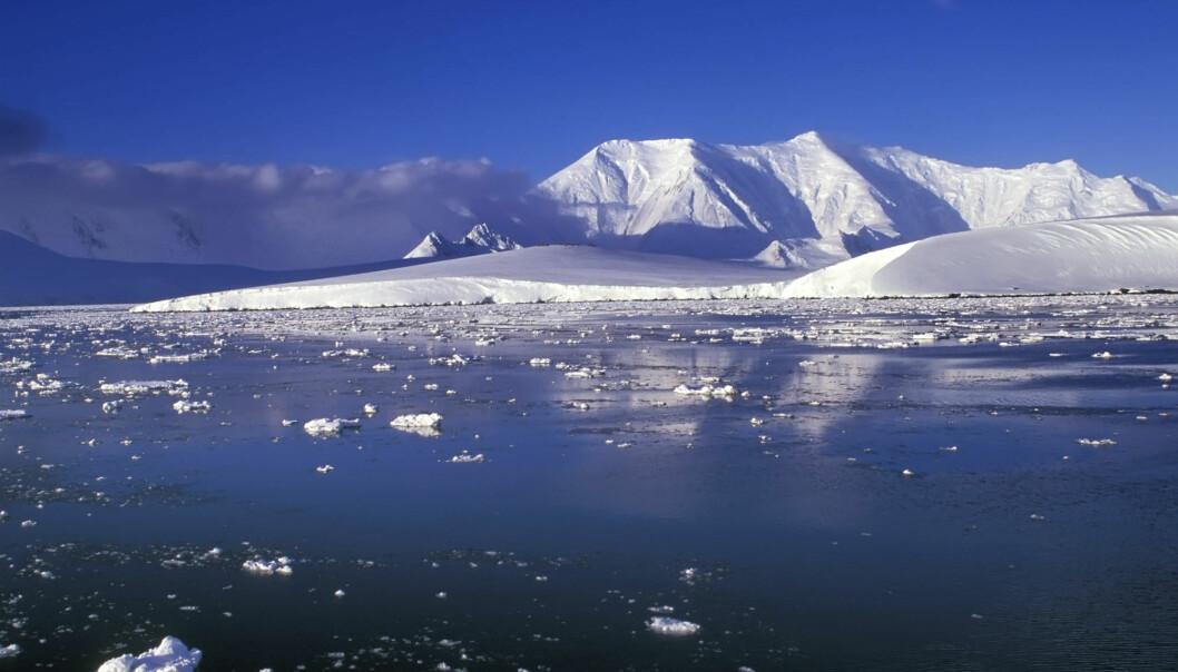 – Vi ønsker å styrke det norske Antarktis-forskermiljøet. Da kan vi få til bedre prosjekter, høyere kvalitet og bidra i enda større grad internasjonalt, sier seniorrådgiver ved Norsk polarinstitutt. (Illustrasjonsfoto: Colourbox)