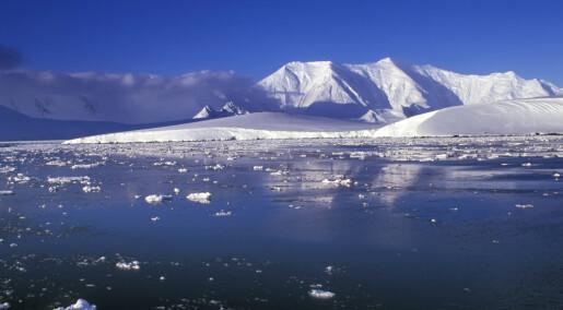 Antarktis-eksperter samles i Tromsø