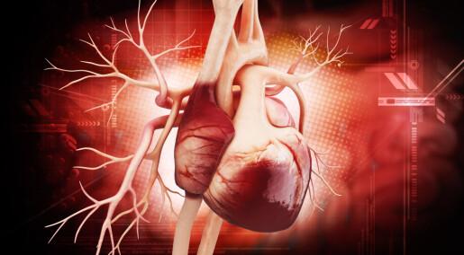 Tarmbakterier kobles til hjertesvikt