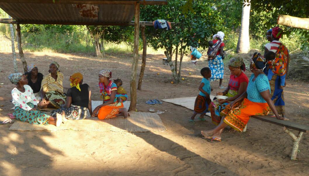 I fruktsesongen står kvinnene i Mosambik for mesteparten av husarbeidet, og de trenger ofte hjelp av barna. Jenter tas oftere ut av skolen enn gutter for å hjelpe til hjemme. – Dersom kvinnene får ansvar for ny teknologi, i tillegg til deres andre arbeidsoppgaver, er det en risiko for at flere jenter tas ut av skolen. Vi må forsikre oss om at ny teknologi ikke fører til at jenters arbeidskraft blir så viktig at de tas ut av skolen, sier Otte. (Foto: SOLTØRK)