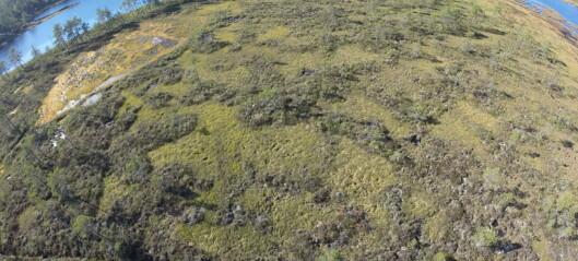 Myra – karbonlager og hjem