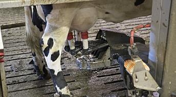 Forskeren forteller: Slik kan vi få like mye melk med mindre bruk av energi