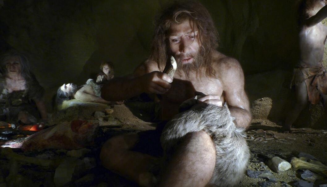 Hvordan var egentlig neandertalerhjernen? Dette er en utstilling i Kroatia, ved et svært kjent neandertaler-bosted.  (Foto: REUTERS/Nikola Solic/Files/NTB Scanpix)