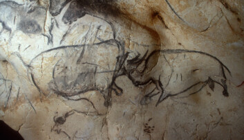 Disse kulltegningene ble laget for titusenvis av år siden. Nå har forskere analysert kullet.
