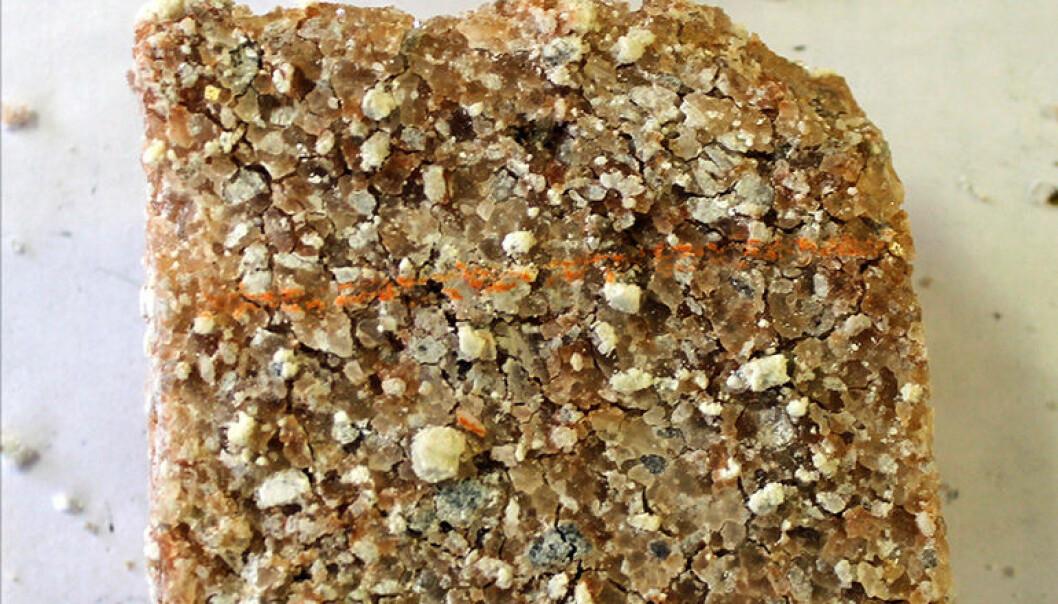 Salter fra gammelt sjøvann avslører informasjon om oksygenering av jordas atmosfære for mer enn to milliarder år siden. Saltene har innebygde fragmenter av kalsiumsulfat. (Foto: Kärt Paiste)