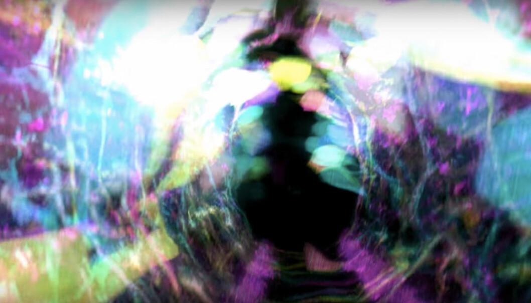 Levende nerveceller under utvikling i ryggmargen ser ut som en scene fra en science-fictionfilm i dette opptaket med et mikroskop som er utviklet av nobelprisvinneren og fysikeren Eric Betzig og gruppen hans ved Howard Hughes Medical Institute. Mikroskopet tar blant annet i bruk en teknikk som brukes i store teleskop for å fjerne forstyrrelser fra urolig luft. Dermed blir bildene mye skarpere. (Bilde: Fra video publisert av  HHMI Howard Hughes Medical Institute)