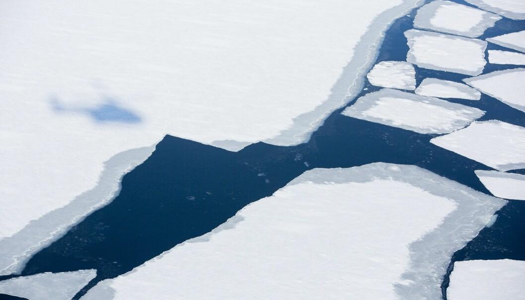 Sårbar is i Arktis etter varmerekord