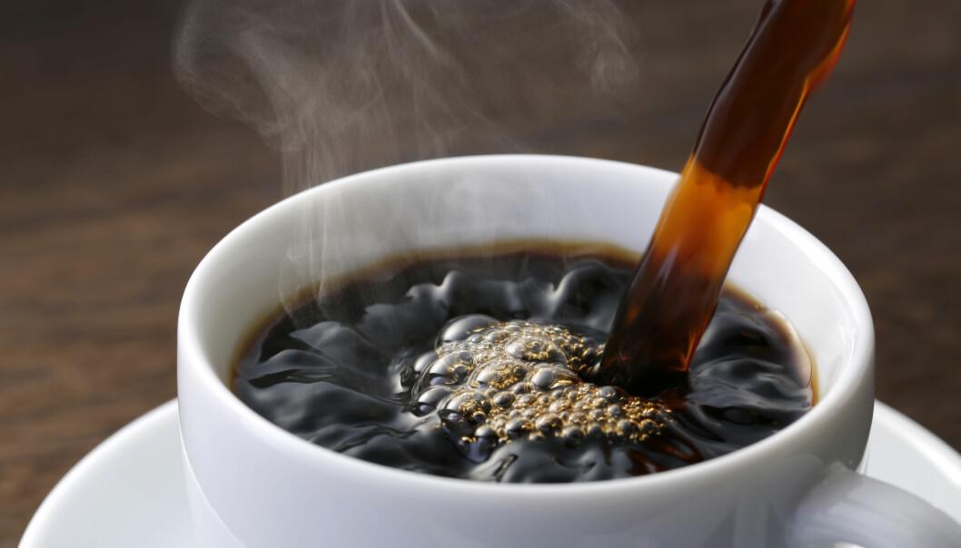 Nyt kaffen med god samvittighet! Den er ikke farlig for hjertet. (Foto: NOBUHIRO ASADA / Shutterstock / NTB scanpix)