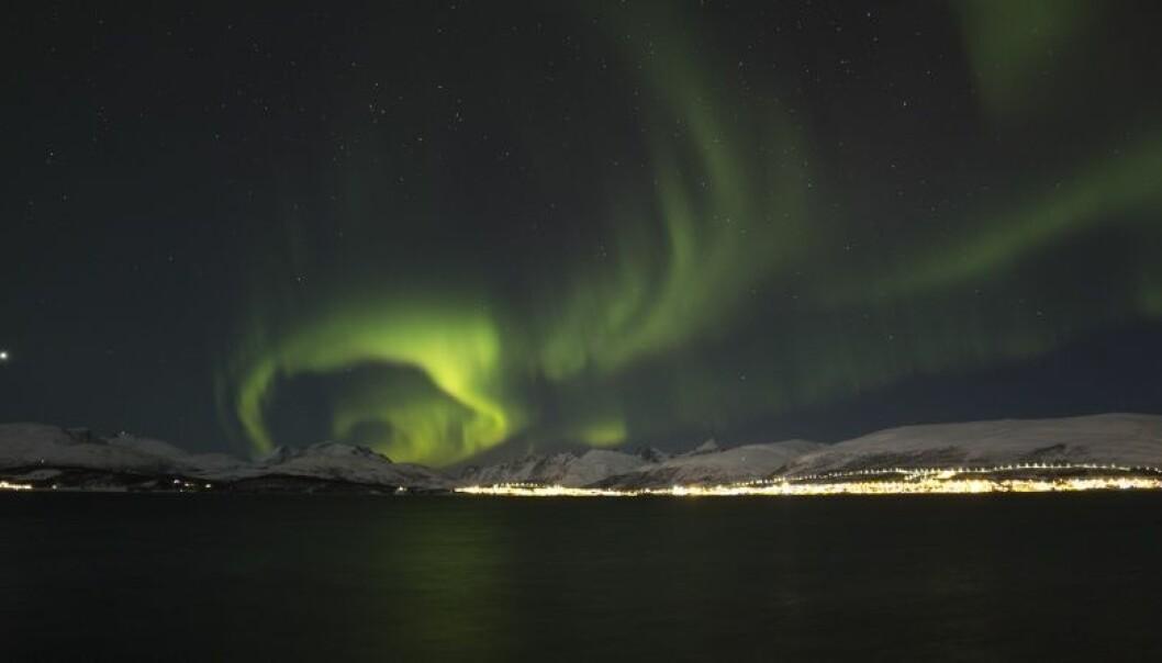 En av nordlysets kulører er grønn, som oftest opptrer i nord.  (Foto: David Jensen)