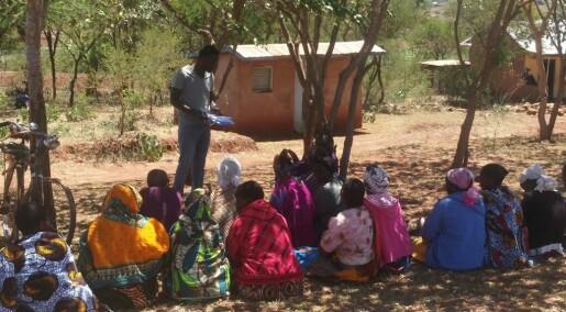Øst-afrikanske bønder er positive til GMO