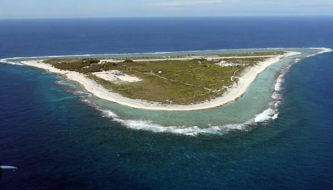 Koralløya Minamitori er bare 1 kvadratkilometer stor. Likevel setter den Japan i stand til å legge krav på et nesten 430 000 kvadratkilometer stort havområde i det vestlige Stillehavet. (Foto: Buffalo University)