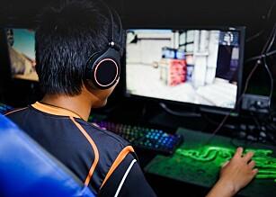 Dataspel kan fremme integrering