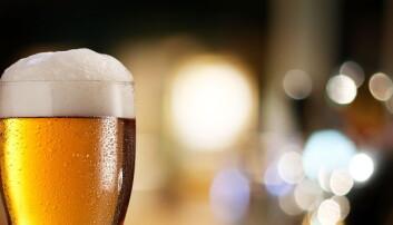 1600 år gamle spor etter ølbrygging i Sverige