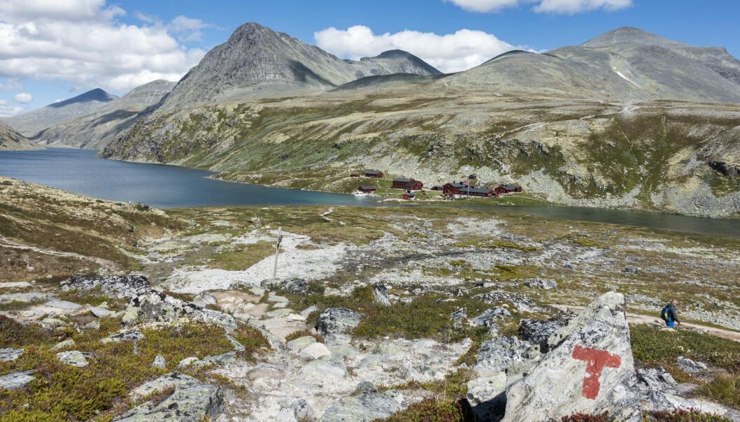 Hvordan ble fjellene våre til? Det er geologer uenige om. Her ser du fjellene i Rondane. (Foto: Gorm Kallestad / NTB scanpix)