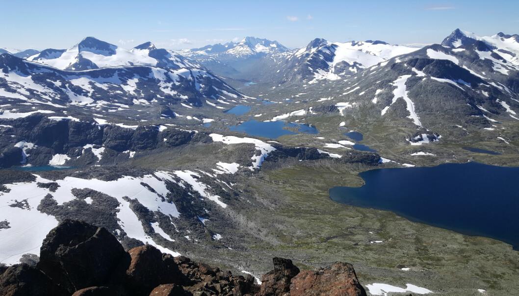 Er de norske fjellene – som Jotunheimen – egentlig hele 400 millioner år gamle? Ikke bare 20 millioner år, slik den rådende hypotesen har vært helt siden 1800-tallet. Er norske fjell så steingamle så stemmer det med at de er dannet på akkurat samme måte som Alpene, Himalaya og Andesfjellene – ved at tektoniske plater støter sammen. Den gangen lå nemlig Norge over en sprekk der to plater kolliderte. Men er hypotesen riktig, må den også forklare hvordan norske fjell kan ha overlevd 400 millioner år uten å ha forsvunnet på grunn av erosjonen. En slik mulig forklaring ligger i hypotesen om isostatisk oppdrift. Den handler kort fortalt om at etter hvert som fjellene eroderer, så blir de sakte med sikkert lettere. Når fjellene blir lettere, dyttes de år for år litt opp av bakken igjen. Slik kan norske fjell ha overlevd i 400 millioner år. (Foto: TellyVision / Shutterstock / NTB scanpix)