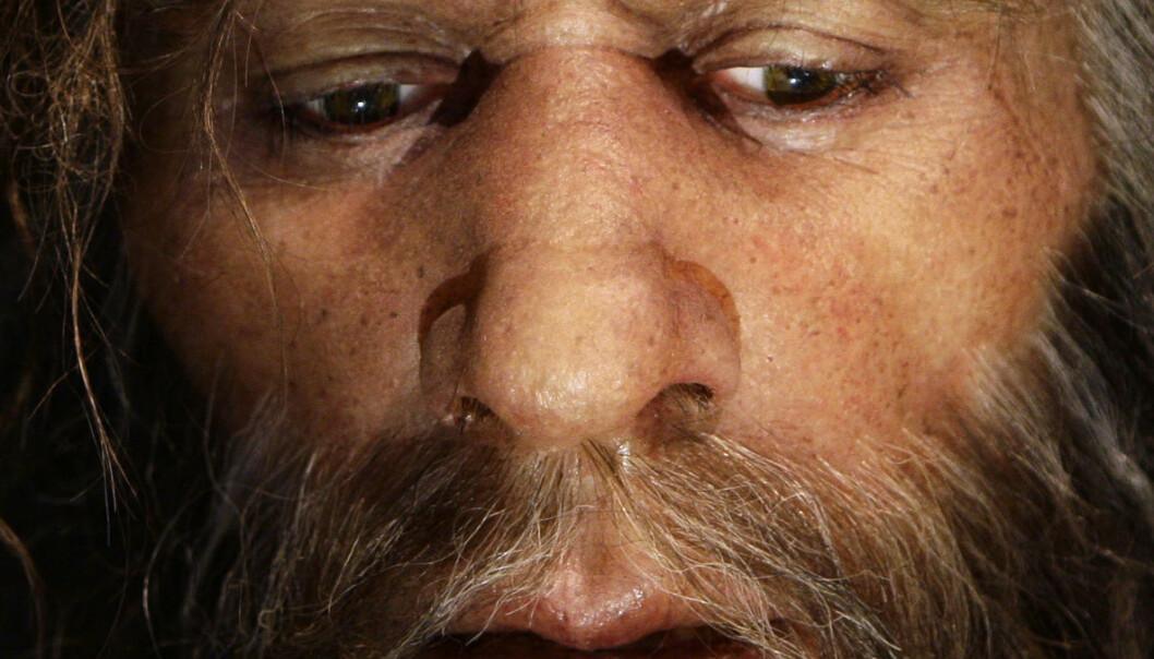 Hvordan jaktet neandertalerne?