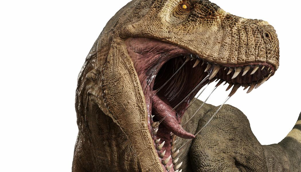 Hadde du møtt en dinosaur på ordentlig, ville den trolig ikke sett slik ut. (Illustrasjon: DM7 / Shutterstock / NTB scanpix)