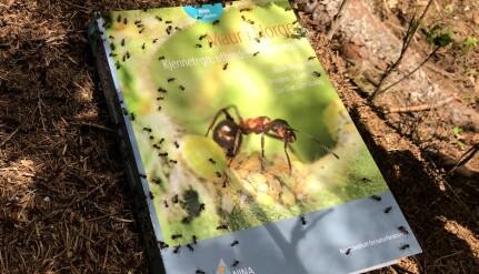 Den rykende ferske boka om maur i Norge. (Foto: Juliet Landrø)