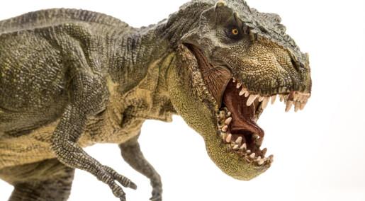 Dette bildet er feil: T-Rex kunne ikke rekke tunge